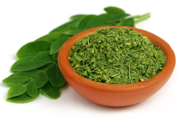 New Moringa Superfood